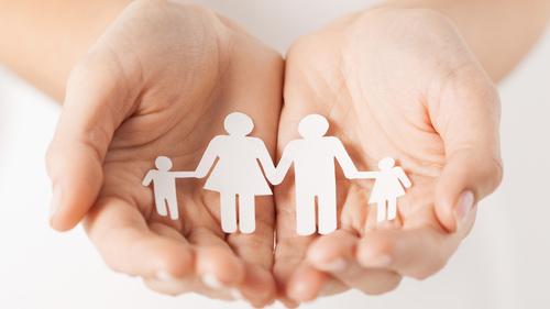 Family Readiness Group (FRG) Care Team Training