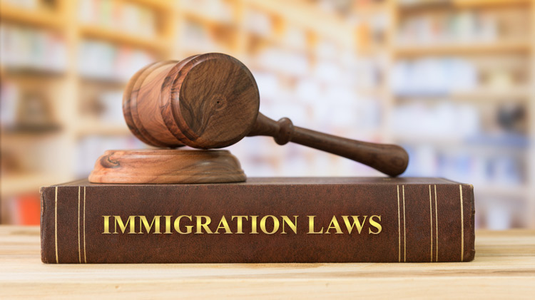Immigration Laws and Issues Class