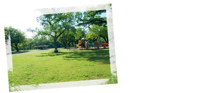 Ambrosia-Springs.jpg