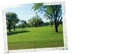 Rucker-Park.jpg