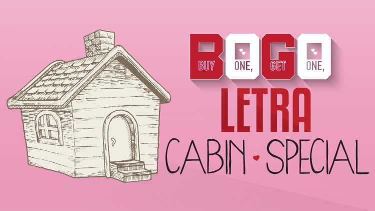 Valentine's Day Cabin Special